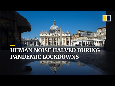 Human activity on Earth half as noisy during Covid-19 pandemic lockdowns