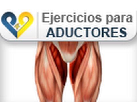 Musculos aductores de la pierna