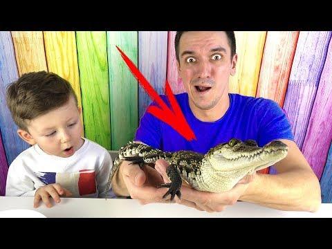 МАРМЕЛАДНАЯ ЕДА против НАСТОЯЩИХ Животных Крокодил в Нашем ДОМЕ! Маленький Сеня