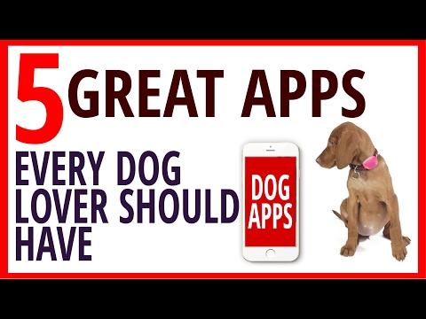5 great Apps Every Dog Lover Should Have [Dog health tips]