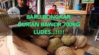 Video BARU BONGKAR DURIAN BAWOR 700KG LUDES...!!! download MP3, 3GP, MP4, WEBM, AVI, FLV November 2018