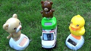 Gấu Con Đi Học – Gấu Con Học Bài Về Màu Sắc ❤ BIBI TV ❤