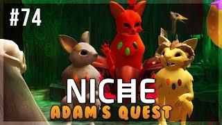 A New Roadblock! | Niche Let's Play • Adam's Quest - Episode 74