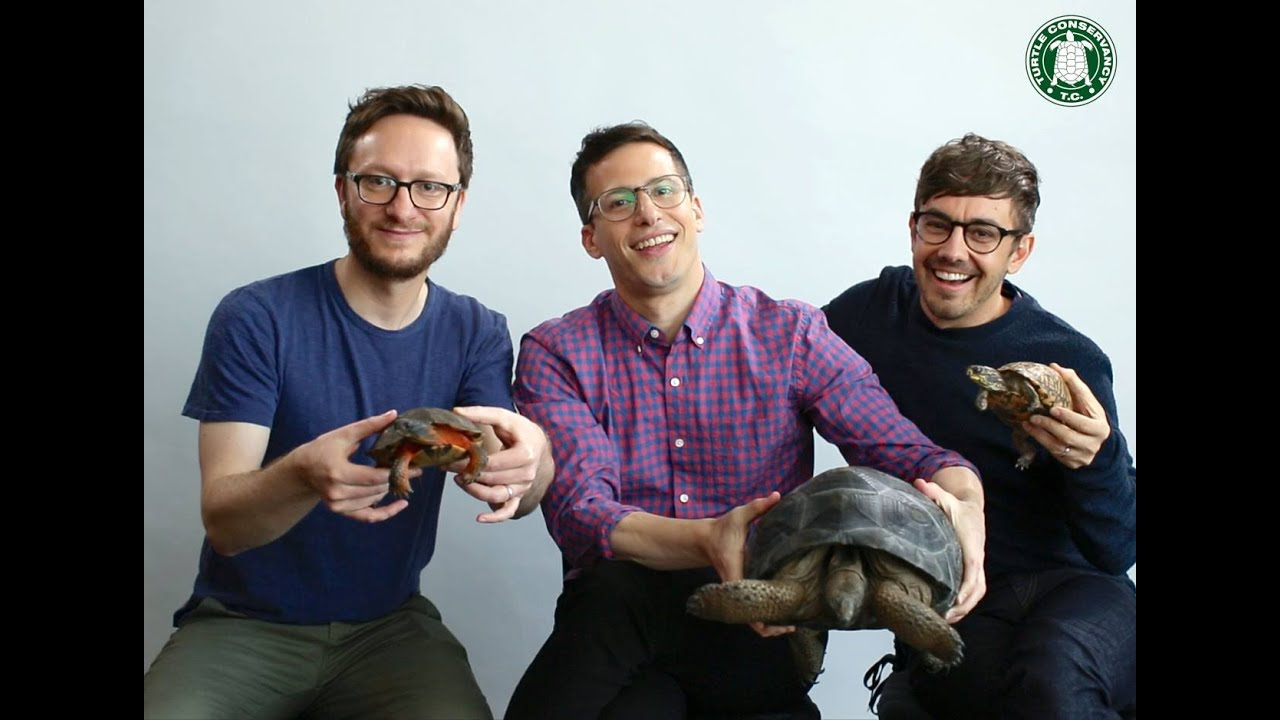 Lonely Island Explains Turtle Sex Important