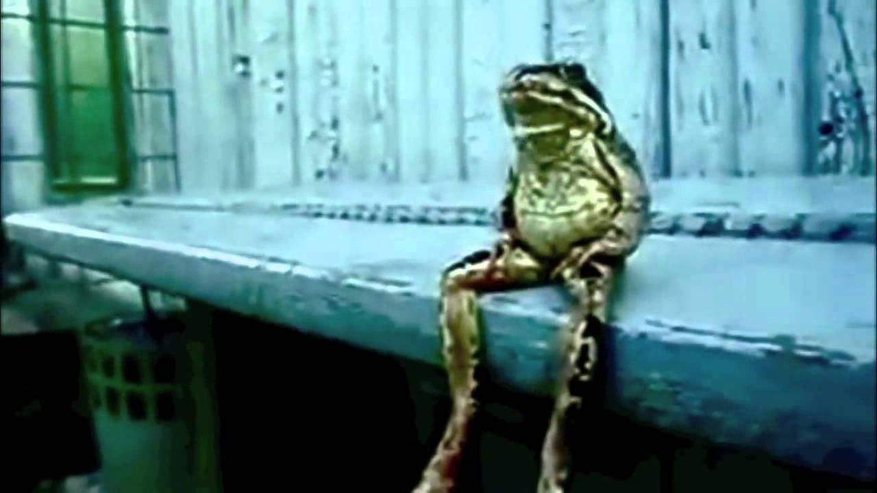 A Frog Sitting On A Bench Like A Human The Movie Fictional