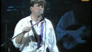 Ricardo Montaner, La cima del cielo, Festival de Viña 1991