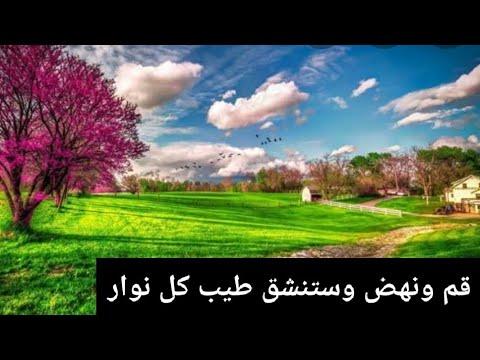 El Hachemi Guerouabi ( الربيعية )