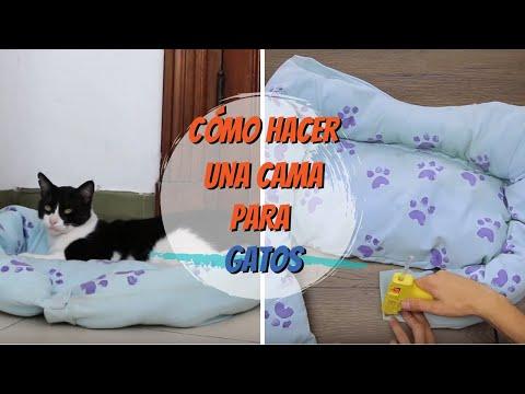Cómo Hacer Una Cama Para Gatos Diy Vix Youtube