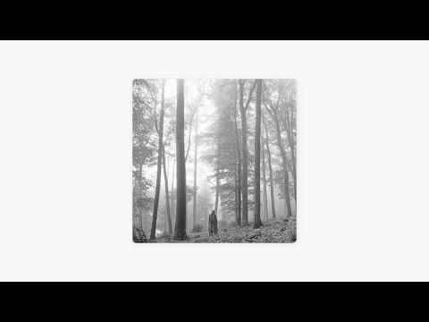 Download taylor swift - folklore (full album)