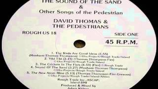 David Thomas & the Pedestrians -  The crickets in the flats (33 RPM - pitch +5%)