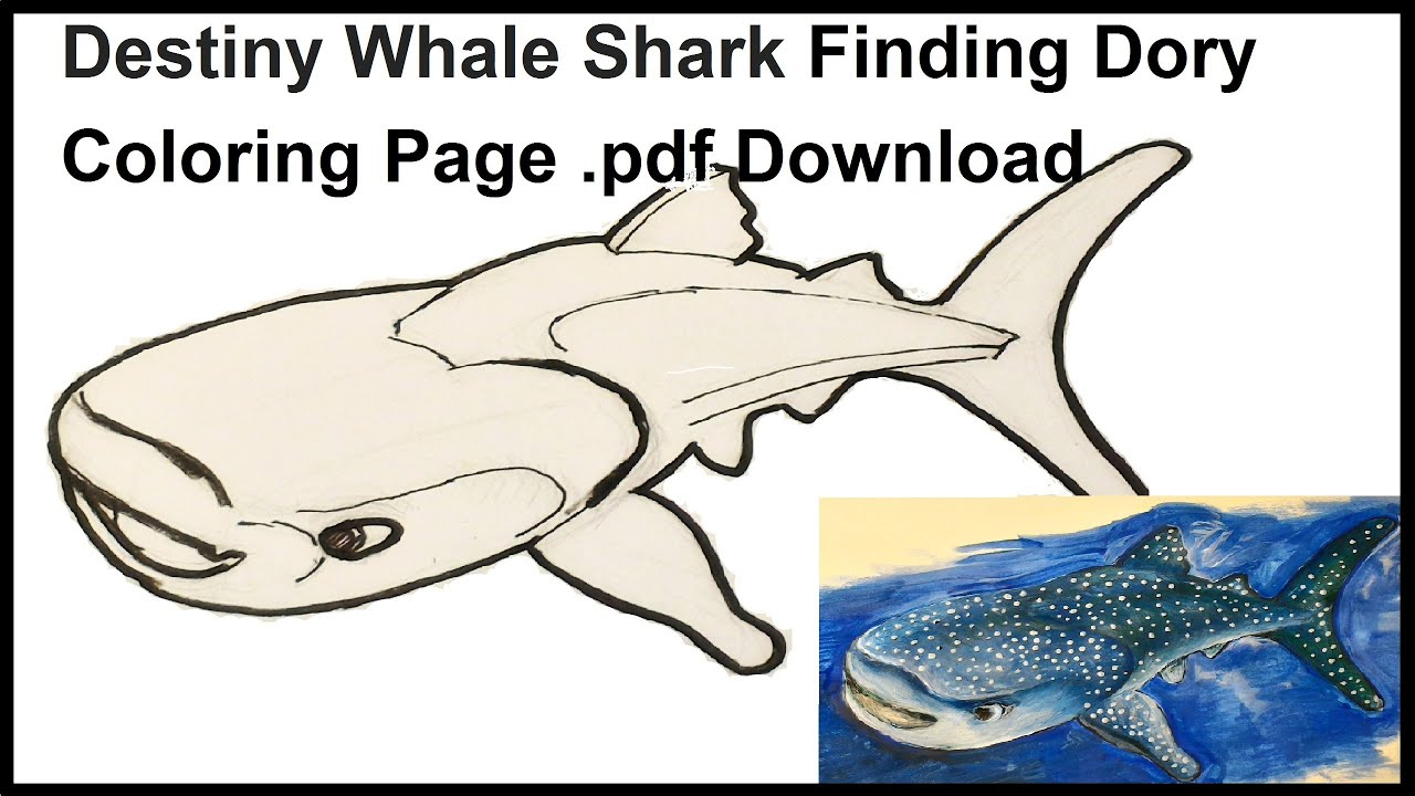 destiny whale shark finding dory coloring page pdf download youtube