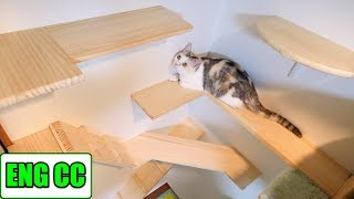 DIY catwalk on the wall in the cat room part3, the wall beside the tower is completed 【Eng CC】