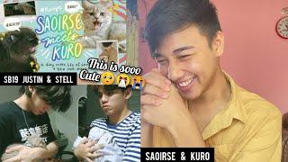 SB19 Justin & Stell | saoirse meets kuro | cat meet up | REACTION