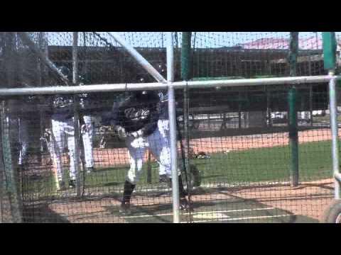 Rymer Liriano - OF - San Diego Padres
