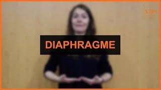 Santé - Diaphragme
