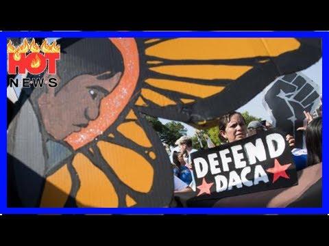 Second federal judge blocks plan to end DACA program | HOT NEWS