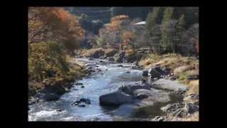 御岳渓谷、青梅の先、奥多摩の手前です。都内の紅葉として、素晴らしい...