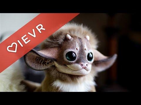 Top 10 Cutest Animal Dolls By Santani