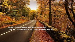 Markus Schulz feat. Ethan Thompson - Love Me Like You Never Did (Amir Hussain Remix)