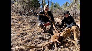 Late Season Bull Elk Hunt in Arizona