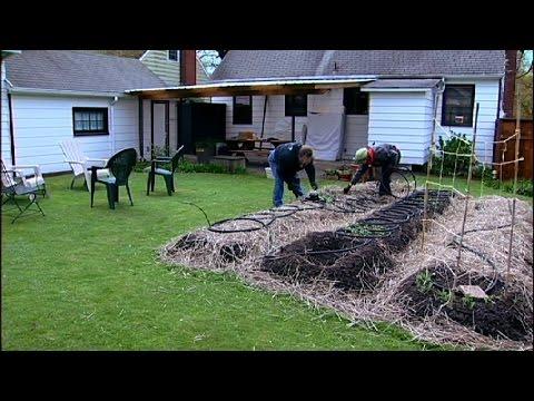 Your Backyard Farmer - Mobile Minute - YouTube