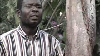 Pengaudzoke (Daiton Somanje) - Tokudai Mose