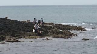함덕 해안도로 2018