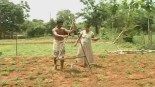 Eco Agriculture Development Project in Hambanthota Sri Lanka