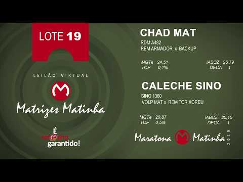 LOTE 19 Matrizes Matinha 2019