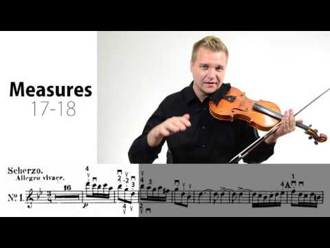 National Youth Orchestra USA Violin Audition Excerpts Lesson