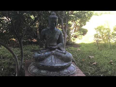 universal-law-#7-meditation-to-feel-safe-and-grounded