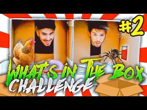 COSA C'È NELLA SCATOLA? | What's In The Box Challenge 2 | Matt & Bise