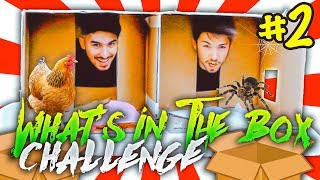 COSA C'È NELLA SCATOLA? | What's In The Box Challenge 2 | Matt & Bise