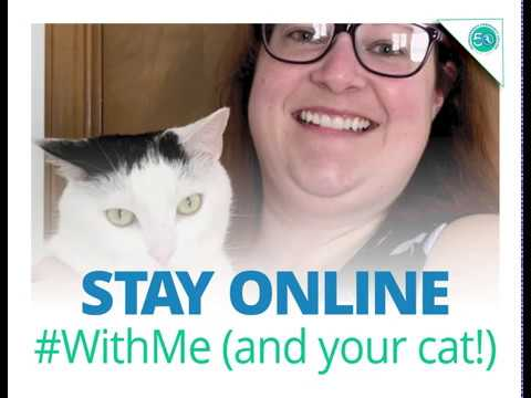 Learn More About Rappahannock Community College and Online College Classes. #StayHome. #WithMe.