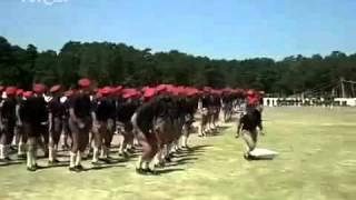 Rey Juan Carlos I levantando la bandera de Falange Española...