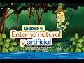 Entorno Natural y Artificial (Unidad 4 - EDA)