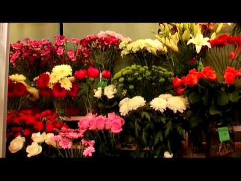 Kukkakauppa Forssa