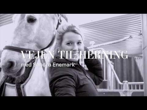 Vejen til Herning - Del 3 // Herning Horse Show 2017