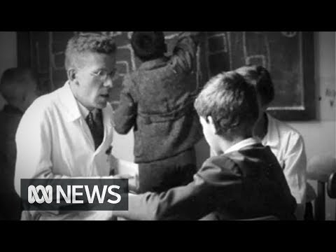 Hans Asperger 'actively cooperated with Nazi child euthanasia program'