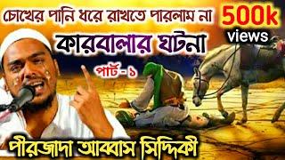 কারবালার ঘটনা ওয়াজ করলেন পীরজাদা আব্বাস সিদ্দিকী ভাইজান ।।  সুনলে জান ঠান্ডা হয়ে জাবে