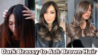 Perfect ASH BROWN for DARK HAIR