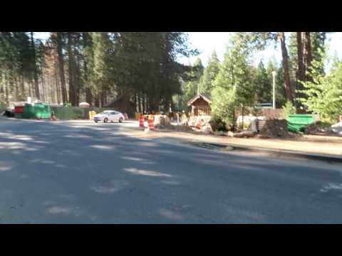 Mariposa Grove of Giant Sequoias  is closed - Yosemite National Park