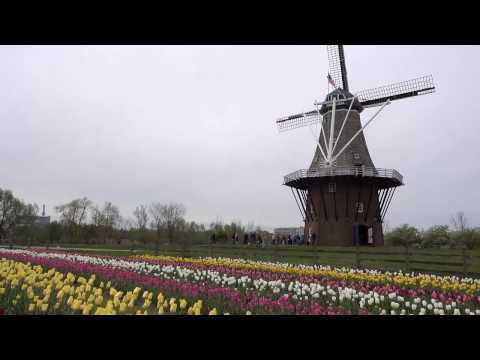Tulip Time in Holland, Michigan Travel Vlog