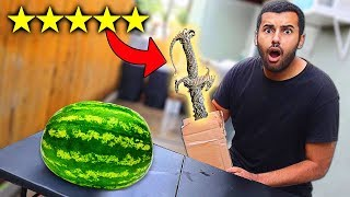 I Bought The BEST Rated WEAPONS On Wish!!! (5 STAR)