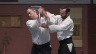 Ken dori et jo dori ● Kobayashi Ryu Aikido