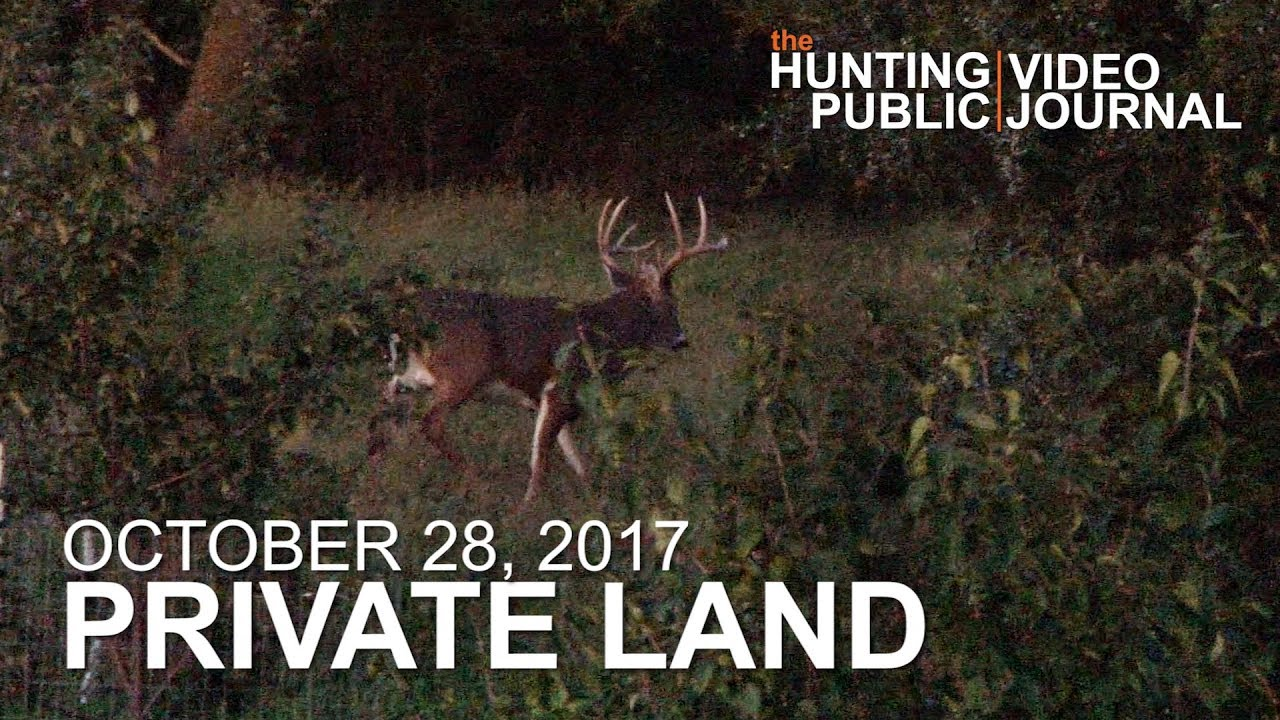 Private Land: October 28 - Close Call With a Mature Buck | The Hunting  Public