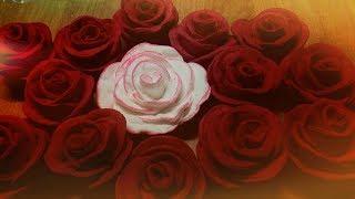 Розы из ватных дисков Как и чем покрасить розы!