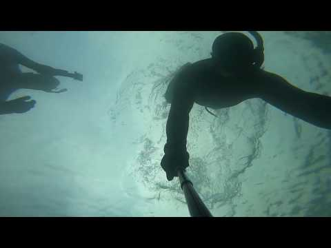 Freedive Douglas Harbour
