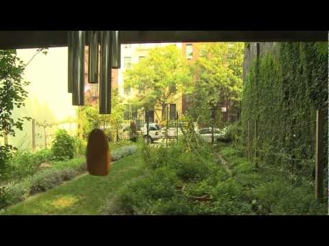 Celebrating NYRP's Community Gardens Across New York City's Five Boroughs