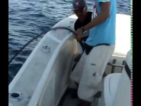 DeepSea Fishing (Durban)